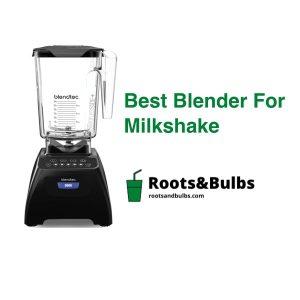 Best Milkshake Blender