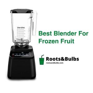 Best frozen fruit blender