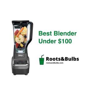 Best budget blender