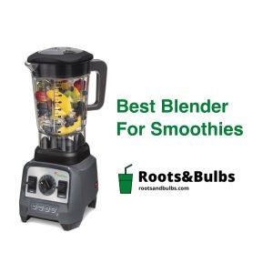 Best Smoothie Blender