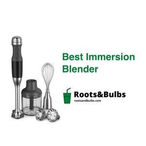 Best Immersion Blender
