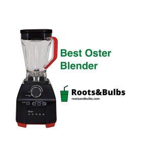 Best Oster Blenders