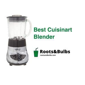 Best Cuisinart Blenders