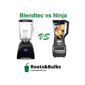 Blendtec VS Ninja