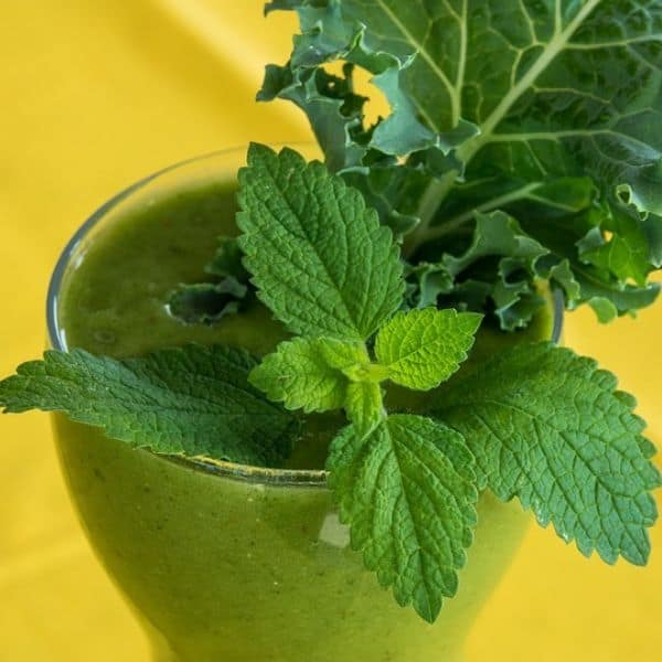 Kale smoothie in a glass