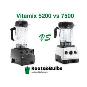 Vitamix 5200 vs 7500