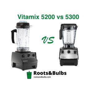 Vitamix 5300 vs 5200