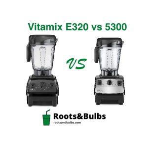 Vitamix 5300 vs E320