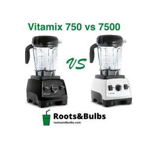 Vitamix 7500 vs 750